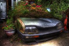 Don't scrap your old car-use it as a feature in the garden!