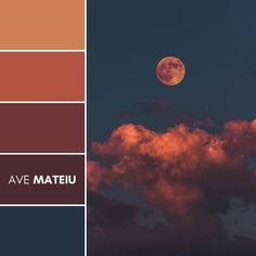 Bloody Moon Color Palette #55 – Ave Mateiu  -  Summer 2020, color palette, color palettes, colour palettes, color scheme, color inspiration, color combination, art tutorial, collage, digital art, canvas painting, wall art, home painting, photography, weddings by color, inspiration, vintage, wallpaper, background, rustic, seasonal, season, natural, nature