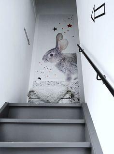 heel grappig, dat konijn bovenaan de trap