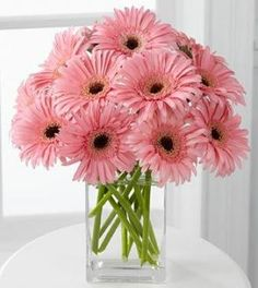 just a little tip - change the water daily with Gerberas.they HATE dirty water! and only cut stems with a sharp knife! --- I love all flowers. Gerberas for Spring! Easter Flowers, My Flower, Pink Flowers, Beautiful Flowers, Cut Flowers, Fresh Flowers, Simply Beautiful, Orquideas Cymbidium, Pink Gerbera