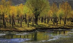 The music of Ghizer's flowing River - Blogs - DAWN.COM