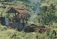 La Réunion lontan : 12 monuments disparus en photos | Réunionnais du Monde - Ile de la Réunion