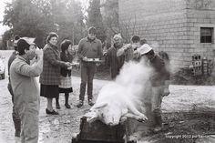 Killing the pig #people #streetphotopio