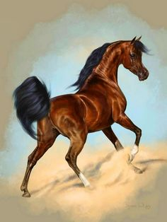 This beautiful Egyptian bred stallion epitomizes the fantasy of the Arabian horse. Beautiful Horse Pictures, Beautiful Horses, Animals Beautiful, Beautiful Artwork, Pretty Horses, Horse Love, Horse Drawings, Animal Drawings, Wild Horses Running