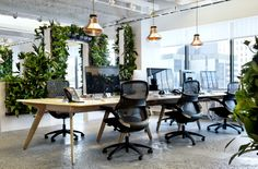 Copper Blow lights and foliage at McCann Erickson Offices. Designed by Design Research Studio.