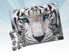Now this is something amazing for advertising (Puzzles). After all it's a real jungle out there! What would you put on yours if you were having one or several created? Puzzles, Competition, Advertising, Printing, Marketing, Amazing, Check, Animals, Image