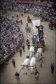 """Il Palio di Siena è una competizione fra le Contrade di Siena nella forma di una giostra equestre di origine medievale. La """"carriera"""", come viene tradizionalmente chiamata la corsa, si svolge normalmente due volte l'anno: il 2 luglio si corre il Palio in onore della Madonna di Provenzano, e il 16 agosto quello in onore della Madonna Assunta"""