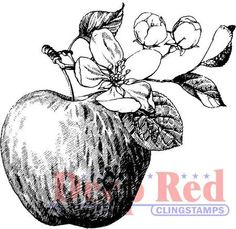 Apples - Rubber Stamps - 123Stitch.com                  $4.13