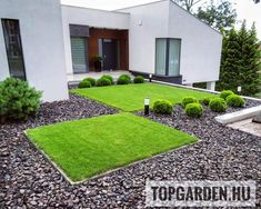 Land Scape, Stepping Stones, Sidewalk, Outdoor Decor, Modern, Instagram, Home Decor, Stair Risers, Trendy Tree