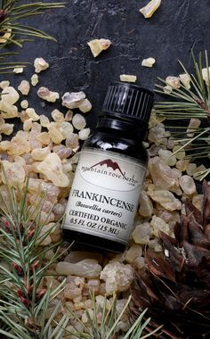 Certified Organic Frankincense Essential Oil from Mountain Rose Herbs