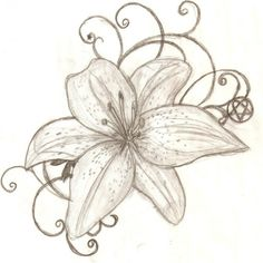 Black and White Tiger Lily Sketch Tattoo, Tiger Lily Tattoo Designs Tiger Lily Tattoos, Lily Flower Tattoos, Flower Tattoo Meanings, Tattoos Skull, Foot Tattoos, Lilly Flower Drawing, Tatoos, Tattoo Flowers, Tribal Tattoos