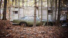 V lese našli vzácný Aston za miliony - Obrázek 1