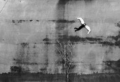 Miro Švolík, My Life as a Man, 1986 Still Photography, Fine Art Photography, 20th Century Fashion, Destin, New Journey, Medium Art, Black And White Photography, Art Forms, Contemporary Art