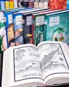 This hardcover box set of C. S. Lewis's classic fantasy series The Chronicles of Narnia includes cover art by two time Caldecott Medal-winning illustrator Chris van Allsburg and the complete black-and-white original interior art by Pauline Baynes.  📸 @wibblywobblybookywooky The Silver Chair, The Magicians Nephew, White Art, Black And White, Books For Tweens, Prince Caspian, Books Everyone Should Read, Last Battle, Cs Lewis