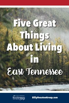 We love living in East Tennessee! Hike in the Smoky Mountains, immerse yourself in history, plant a garden. Moving To Tennessee, Tennessee Girls, State Of Tennessee, Nashville Tennessee, Forensic Facial Reconstruction, Moving To Another State, North Carolina Mountains, National Parks Usa, Best Places To Live
