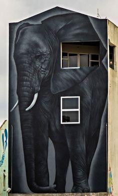 Street Art by Owen dippie in New Plymouth, New Zealand #streetart
