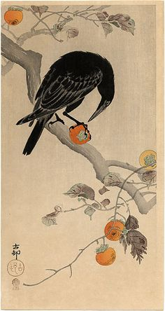 Crow eating a Persimmon. Shin-hanga style woodblock print by Ohara Koson week 9 pin one; acrow is a native american symbol.. a comunicator between the living and the spiritual. being 1/4 my self i feel humbled when i hear them around.grandmother was full blooded.
