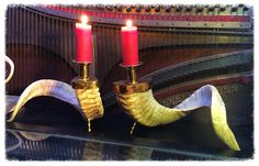 Rams horn Candle holder Pair with Secret stash Taxidermy