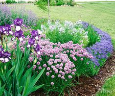 This spring bed is full of textures and contrasts. As you consider your purple garden, keep in mind your growing conditions. Just for fun, incorporate something unexpected into the design, such as chives, which also double as edibles.