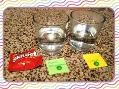 Skittles Experiment for Scientific Method
