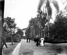 Jardim da Luz em 1908.  Um lindo registro de Guilherme Gaensly.