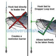 Drop shot rig/Kentucky rig for Catfishing in heavy cover Catfish Rigs, Catfish Bait, Catfish Fishing, Trout Fishing Tips, Fishing Rigs, Fishing Knots, Crappie Fishing, Gone Fishing, Fishing Bait