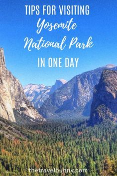 Travel guide - how to get the best out of a day trip to Yosemite National Park, California #yosemite #nationalpark
