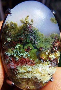 Zoe A Whitman  Picture Rock Lovers · Absolutely stunning garden moss agate by Egon Febri!! What do you see?