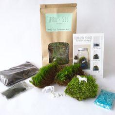 DIY Terrarium Kit - Medium, Moss Terrarium, Unicorn Terrarium