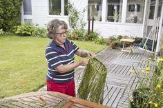 Sedan en av grannarna tog med Kerstin Levin till kursen på Tärna folkhögskola har hon gjort en ny gräskrona varje år.
