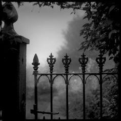 Cobweb Gate. www.andrewsanderson.com Copyright Andrew Sanderson. Black and white, analogue, film, darkroom