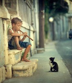 20 Cool Pictures of cat charmer Boys Playing, Jolie Photo, I Love Cats, Hate Cats, Stuffed Animals, Cute Kids, 5 Kids, Cats And Kittens, Cool Pictures