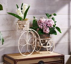 A bicycle built for two--planters. Place this wheeled wonder in a garden or on a patio for a delightful botanical display. QVC.com