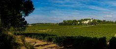 Château Les Carrasses, Quarante (Languedoc-Roussillon), France http://charmhotelsweb.com/en/hotel/FR030