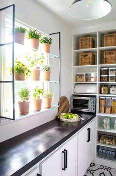 Walk-In Pantry Reveal Walk-In Pantry Reveal: One Room Challenge Week 6 - Own Kitchen Pantry Kitchen Pantry Design, Kitchen Pantry Cabinets, Diy Kitchen, Kitchen Dining, Kitchen Decor, Plants In Kitchen, Kitchen Ideas, Kitchen Layouts, Happy Kitchen