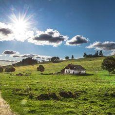Wonderfull Place  #inlovewithswitzerland #photopedropetiz #swissalps #switzerland #swiss #neuchatel #vuedesalpes #mountains #mountain #lachauxdefonds #green #landscape #sunset #chalet #view #places_wow #explore #exploring #explorenature #travel #suisseromande #cow #trip #camp #switzerlandpictures #switzerlandwonderland #exploretheworld #exploreswitzerland #outdoors #tree Green Landscape, Swiss Alps, Switzerland, Exploring, Cow, Wonderland, Outdoors, Camping, Mountains