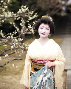 March 2017: famous geiko Satsuki under plum blossoms by yoshi.rcz on Instagram