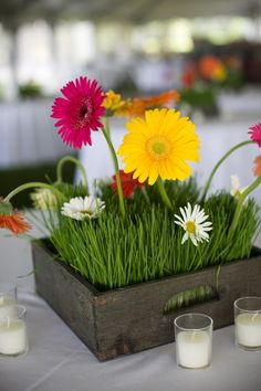 cute grass and gerbera daisy centerpiece in rustic crate/tray