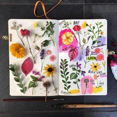 Botanical No. 3 complete. #carolyngavinsketchbook #carolyngavin #botanicalillustration #botanical #lavender #lamium #japaneseanemone #chrysanthemum #watercolor #botanicalart