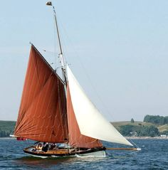 The Little Windflower. A gaff-rigged clipper. circa 1890
