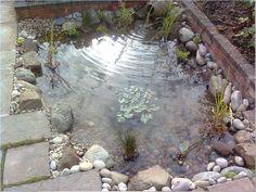 Garden types and styles gardens ranges and garden ponds - Build pond wildlife haven ...