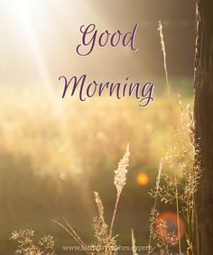 Looking for for inspiration for good morning quotes?Browse around this website for unique good morning quotes ideas. These funny quotes will brighten your day. Good Morning For Him, Good Morning Handsome, Good Morning Funny, Good Morning Coffee, Good Morning Sunshine, Good Morning Wishes, Beautiful Morning, Morning Memes, Morning Greetings Quotes