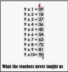What teachers never taught us