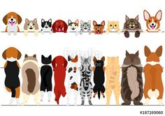 ベクター: standing small dogs and cats front and back border set点