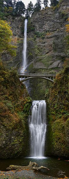 Quiet fall day at the soft, peaceful waters of Multnomah Falls. Multnomah Falls, Rain Storm, Travel Bugs, Landscape Art, Waterfalls, Oregon, Beautiful Places, Around The Worlds, Explore
