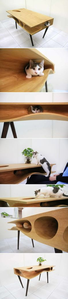 Finally A Way To Keep Cats From Wandering Onto Your Laptop… The CATable! Enfin, un moyen de garder les chats de errer sur votre ordinateur portable… Le CATable! Crazy Cat Lady, Crazy Cats, I Love Cats, Cool Cats, Pet Furniture, Table Furniture, Furniture Design, Cat Room, Here Kitty Kitty