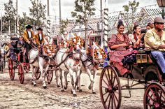 Great picture from the Sevilla #feriadeabril #feriadeabril2017 #SpainSevilla #Andalucia #sportsandtours #sportstours #travel #liusure #summercamps #citytours #sportsevents Visit to http://www.sportsandtours.com/ for more information