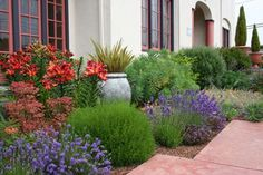 Front Yard Garden Design Mediterranean Garden Design: How to Create a Tuscan Garden Mediterranean Garden Design, Tuscan Garden, Italian Garden, Mediterranean Style, Low Water Landscaping, Front Yard Landscaping, Landscaping Ideas, Landscaping Software, Landscaping Plants