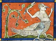 Manfishchicken from French medieval illuminated manuscript.