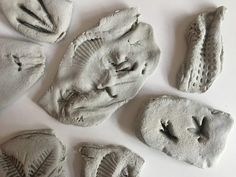 Salt Dough Fossils - The Spirited Puddle Jumper